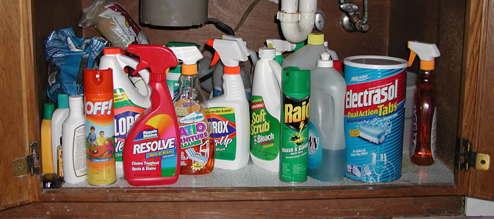 Virtual field trip poisons found in the kitchen for Cleaning products for kitchen